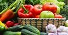 10 полезных советов по переработке и хранению урожая