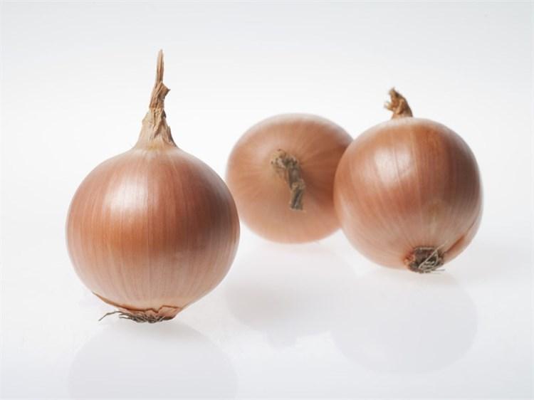 Беннито F1, семена лука репчатого (Seminis / Семинис) - фото 4814
