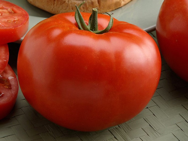 Биг-Биф F1, семена томата индетерминантного (Seminis/Семинис) - фото 4944