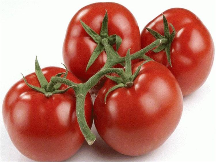 Корвинус F1, семена томата полудетерминантный (Seminis / Семинис) - фото 4975