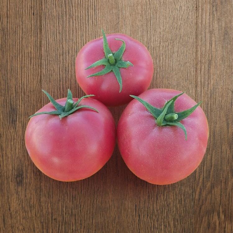 Хапинет F1, семена томата детерминантного (Syngenta / Сингента) - фото 6084