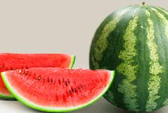 Фростик F1, семена арбуза (Syngenta / Сингента) - фото 6226