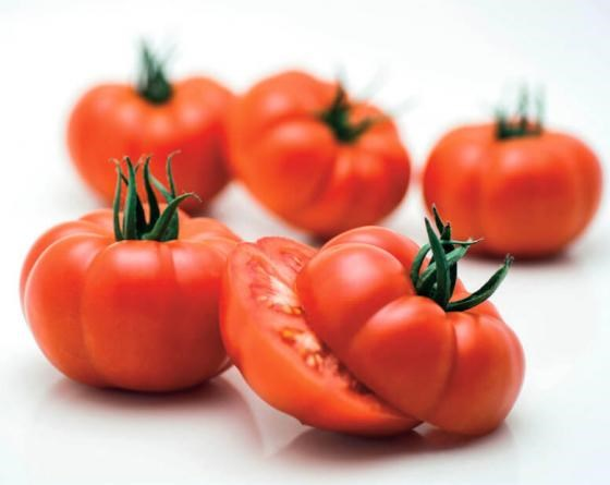 Ребелион F1, семена томата индетерминантного (Vilmorin / Вильморин) - фото 6545