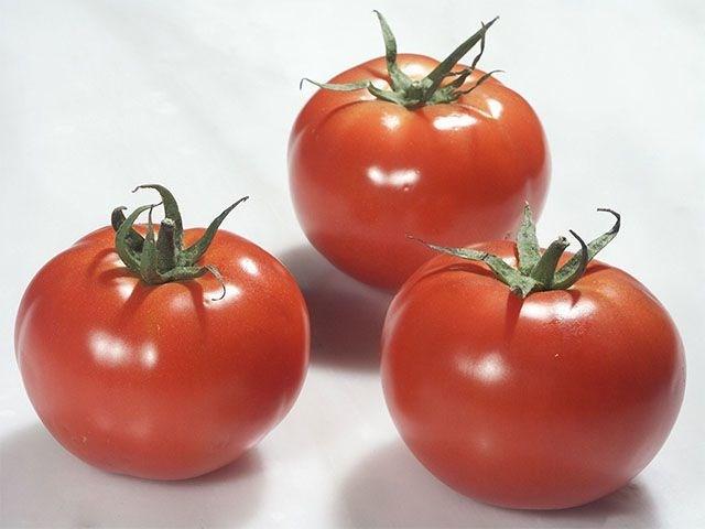 Ралли F1, семена томата индетерминантного (Enza Zaden / Энза Заден) - фото 6613