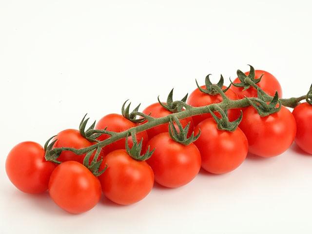 Требус F1, семена томата черри (Enza Zaden / Энза Заден) - фото 6624