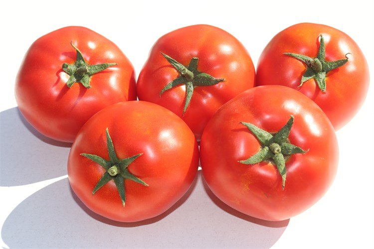 Пинкджейн F1, семена томата детерминантного (Enza Zaden / Энза Заден) - фото 6649