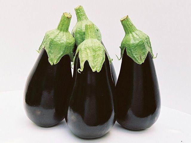 Блек перл F1, семена баклажана (Enza Zaden / Энза Заден) - фото 6691