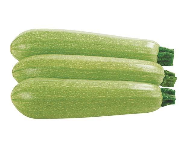 Ардендо 174 F1, семена кабачка (Enza Zaden / Энза Заден) - фото 6693