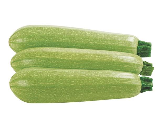 Марселла F1, семена кабачка (Enza Zaden / Энза Заден) - фото 6695