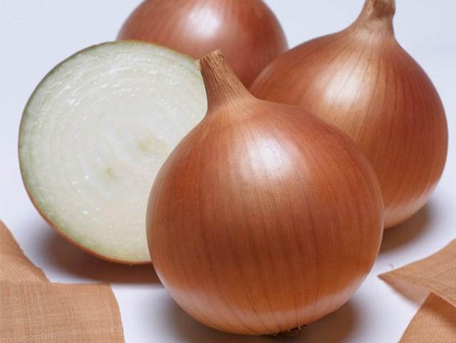 Бенефит F1, семена лука репчатого (Takii Seeds / Таки Сидс) - фото 6705