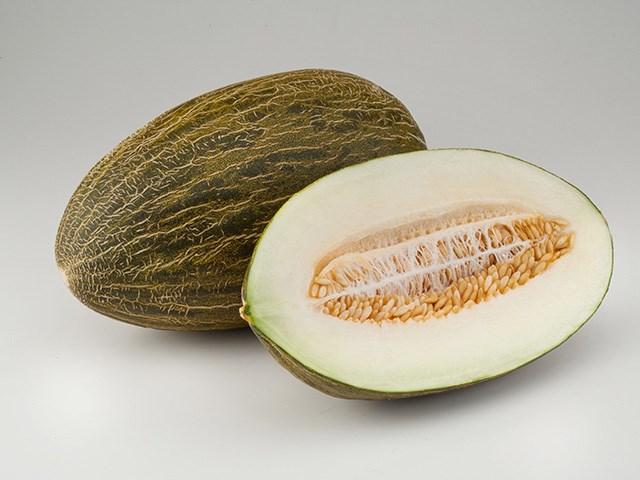 Хабалон F1, семена дыни (Enza Zaden / Энза Заден) - фото 6742