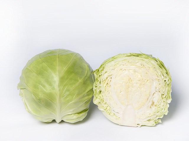 Сунта F1, семена капусты белокочанной (Takii Seeds / Таки Сидс) - фото 6769