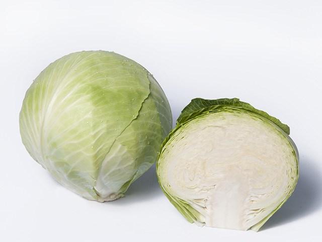 Сторка F1, семена капусты белокочанной (Takii Seeds / Таки Сидс) - фото 6772