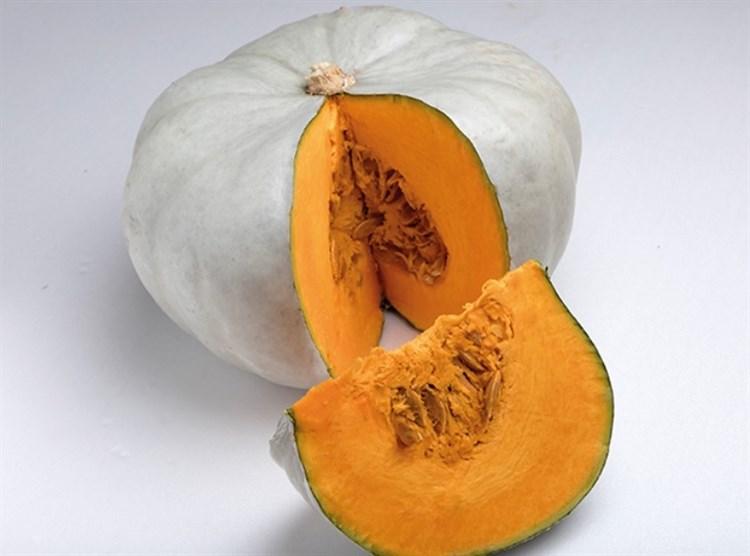 Нельсон F1, семена тыквы (Enza Zaden / Энза Заден) - фото 6800