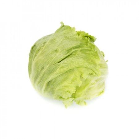 ДАЯНАС Knox ™, семена салата айсберг (Rijk Zwaan / Райк Цваан) - фото 6918