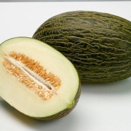 Реймель F1, семена дыни (Rijk Zwaan / Райк Цваан) - фото 7134