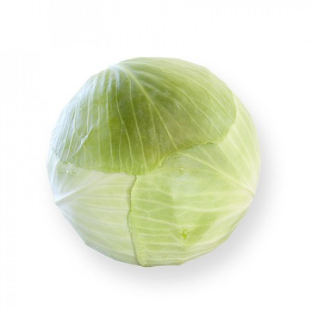 Анкома РЗ F1, семена капусты белокочанной (Rijk Zwaan / Райк Цваан) - фото 7186