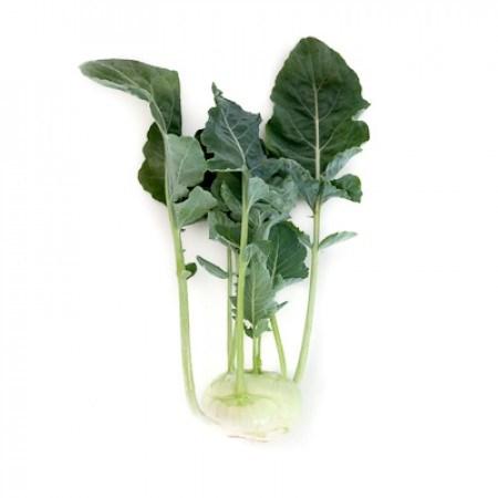 Едер РЗ F1, семена капусты кольраби (Rijk Zwaan / Райк Цваан) - фото 7231