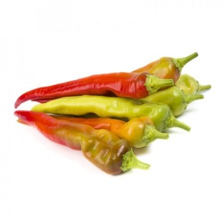 Янка F1, семена перца острого (Rijk Zwaan / Райк Цваан) - фото 7306