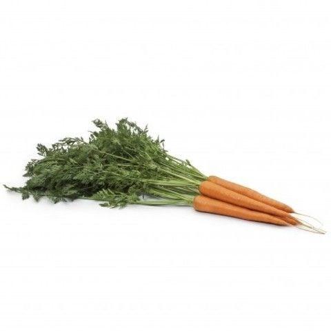 Вармия F1, семена моркови (Rijk Zwaan / Райк Цваан) - фото 7341