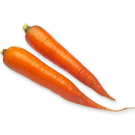 Каротан РЗ, семена моркови (Rijk Zwaan / Райк Цваан) - фото 7344