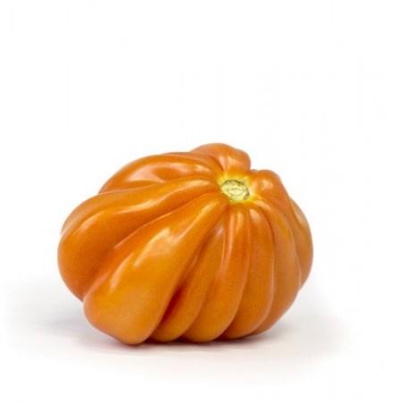 Ругантино F1, семена томата Кор де бёф (Rijk Zwaan / Райк Цваан) - фото 7421