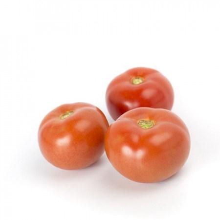Зульфия F1, семена томата индетерминантного (Rijk Zwaan / Райк Цваан) - фото 7432