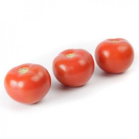 Аламина F1, семена томата индетерминантного (Rijk Zwaan / Райк Цваан) - фото 7436