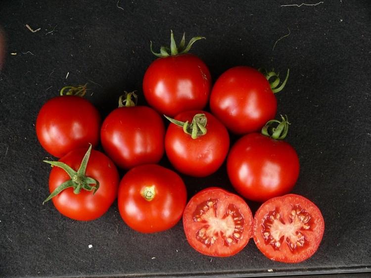 Партова F1, семена томата индетерминантного (Seminis / Семинис) - фото 7473