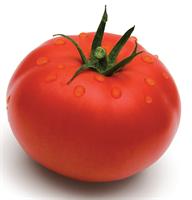 Волверин F1, семена томата детерминантный (Syngenta / Сингента)