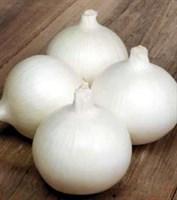 Белло Бланко F1, семена лука репчатого (Sakata / Саката)