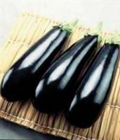 Рома F1, семена баклажана (Sakata / Саката)