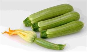 Суха F1, семена кабачка (Sakata / Саката)
