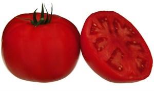 Мона (TMAE 683 F1), семена томата детерминантного (Sakata / Саката)