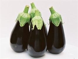 Блек перл F1, семена баклажана (Enza Zaden / Энза Заден)