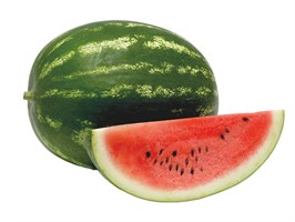 Амфион F1, семена арбуза (Takii Seeds / Таки Сидс)