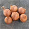 Дайтона F1, семена лука репчатого (Bejo / Бейо) - фото 5106