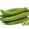 Амалфи, семена гороха (Syngenta / Сингента) - фото 6172