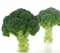 Наксос F1, семена капусты брокколи (Sakata / Саката) - фото 6268