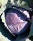 Рэд Джевел F1, семена капусты краснокочанной (Sakata / Саката) - фото 6277